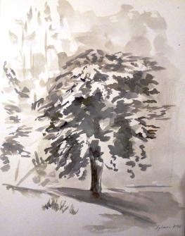 Encre de Chine - 31,5 x 24 cm - 1998