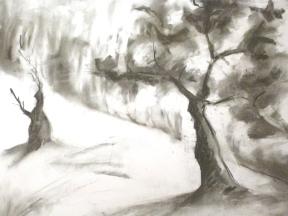 Fusain - 18 x 21 cm - 2000