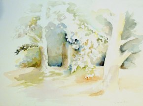 Aquarelle - 31 x 41 cm - 2003