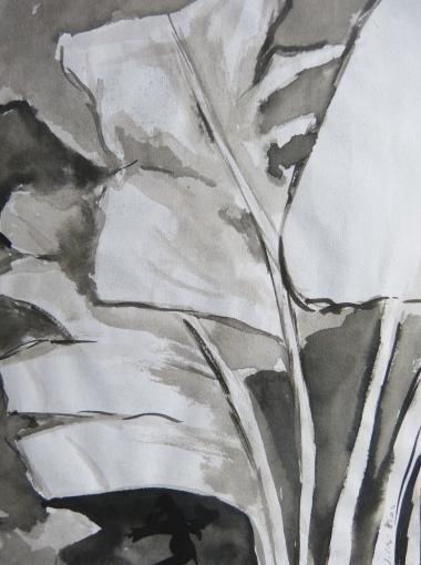 Encre de Chine - 24 x 15 cm2002