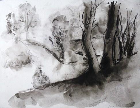 Encre de Chine - 23 x 31 cm - 2003