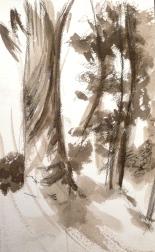 Encre de Chine - 24 x 15 cm - 2004