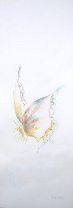 Aquarelle - 18 X 50 cm - 2007