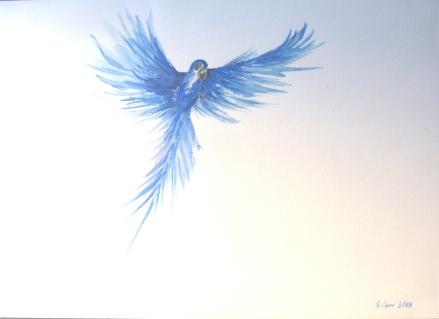 Aquarelle – 36 x 50 cm – 2007